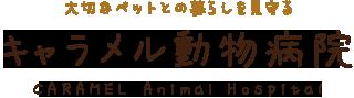 大切なペットとの暮らしを見守る キャラメル動物病院 CARAMEL Animal Hospital